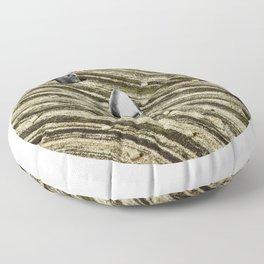 TERRITORIO VISUAL Floor Pillow