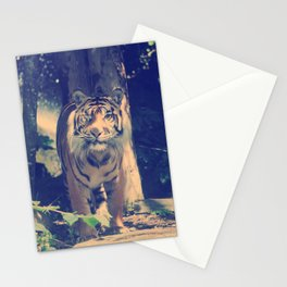 The One Eyed Sumatran Tiger. Stationery Cards