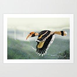 Great Indian Hornbill Art Print