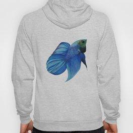 The Blue Fish Hoody