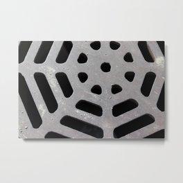 Drainage Web Metal Print