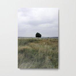 De Hoge Veluwe II Metal Print