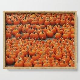 More than a peck of pumpkins at Peck's Produce Farm Market! Serving Tray