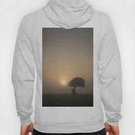 Tree in the Fog Hoody