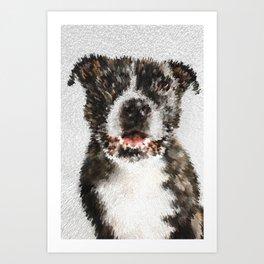 Stylized portrait of a brindle brown staffy dog Art Print