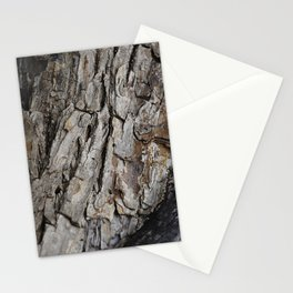 300 Year Old Tree Bark Stationery Cards