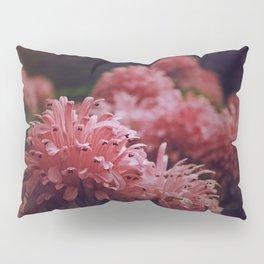 Pink Bellingrath Floral Pillow Sham