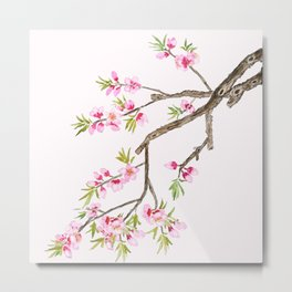 pink peach flowers Metal Print