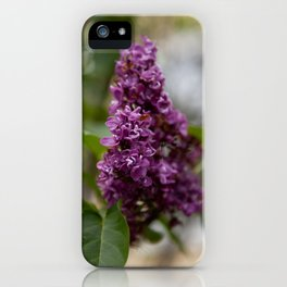 Fresh Purple Lilac iPhone Case
