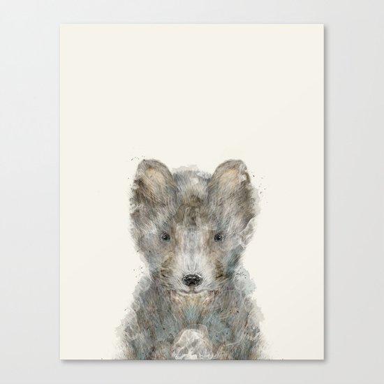 little grey wolf Canvas Print