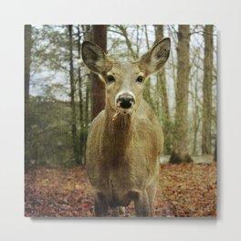 Mama Deerest Solo Metal Print