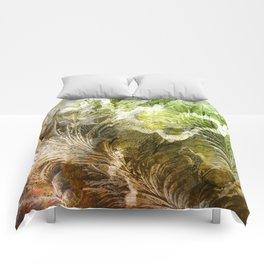 γ Gruis Comforters