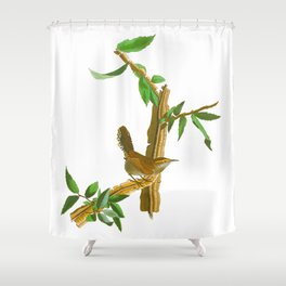 BEWICK'S LONG TAILED WREN Shower Curtain