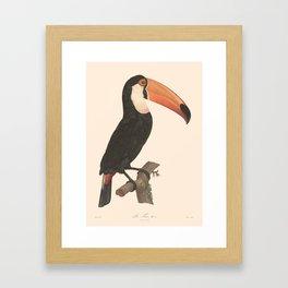 Le Toco Framed Art Print