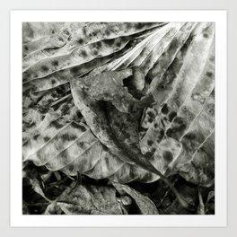 'ABSTRACT LEAF' Art Print