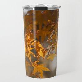 Autumnlights - Gold marple leaves at sparkling backlight Travel Mug