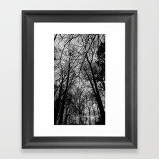 Trees at Mottisfont Framed Art Print