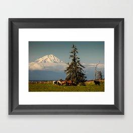 Horses and Mount Redoubt, Enroute to Homer, Alaska Framed Art Print