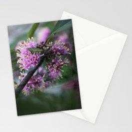 Callicarpa bodinieri blossoms Stationery Cards