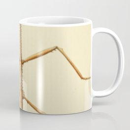 Antique Stick Insect Coffee Mug