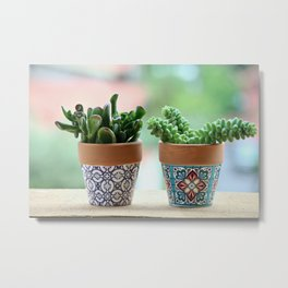 Fat Plants Pots Plant Metal Print