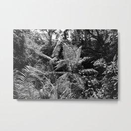 Calibrate Metal Print