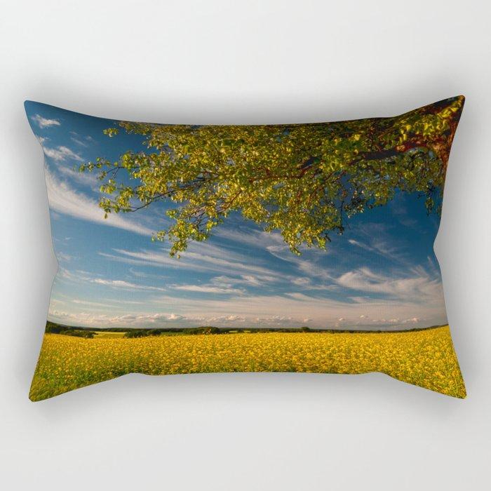 Wonderful springfields with beautiful sky - Rape Rectangular Pillow