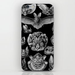 1904 Haeckel Chiroptera iPhone Skin