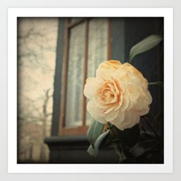 Flowers At The Abbey Art Print