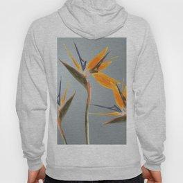 Strelizia - Bird of Paradise Flowers Hoody