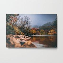 Amazing Autumn Colours Metal Print