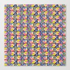 170 Canvas Print