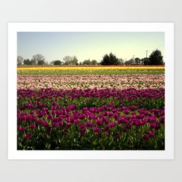 Colorful Day! Art Print