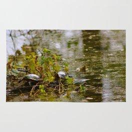 Turtle Pond Rug
