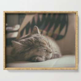 Sweet lullaby. Cat nap. Serving Tray