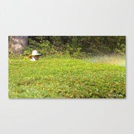 Hong Kong Gardener Canvas Print