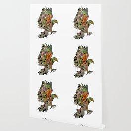 Kea New Zealand Bird Wallpaper