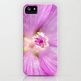 Prairie Mallow iPhone Case