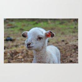 baa-lamb Rug