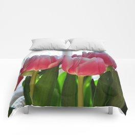 Spring Tulips Comforters
