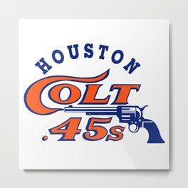 houston colt Metal Print