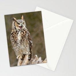 Bad Attitude Stationery Cards