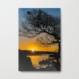 Sunrise Under the Wedge Tree Metal Print