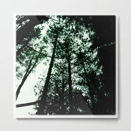 dreaming of tree tops Metal Print