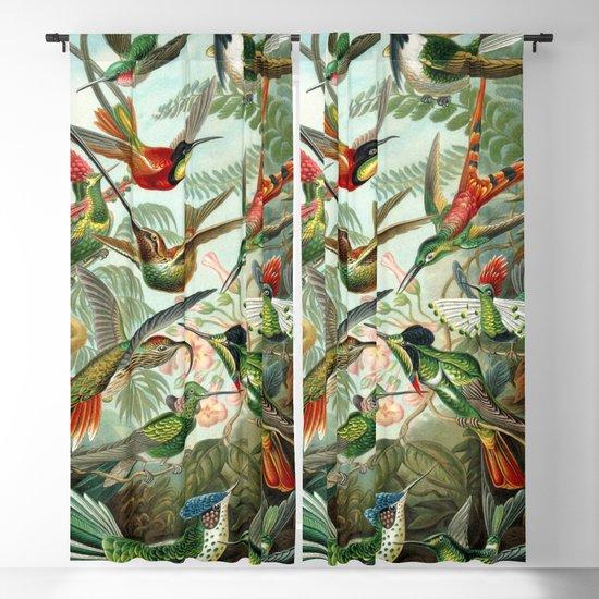 Vintage Hummingbirds Decorative Illustration by shirtsandgifts
