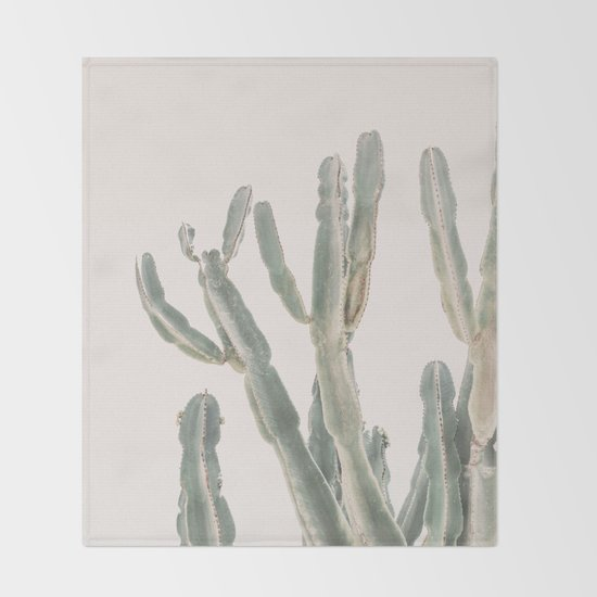 Sunrise Cactus by katypie