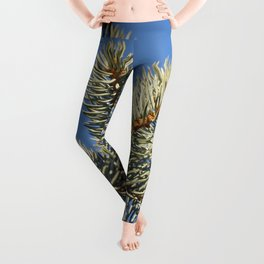 All spruced up and still blue - Blue spruce, blue sky 1564 Leggings
