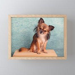 Chihuahua Framed Mini Art Print