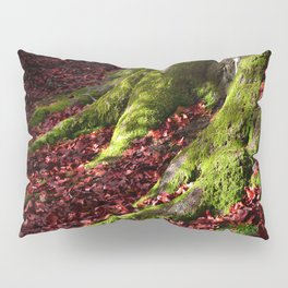 Tree roots, Autumn Leaves Pillow Sham