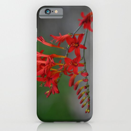 Red Flowers 3 iPhone & iPod Case